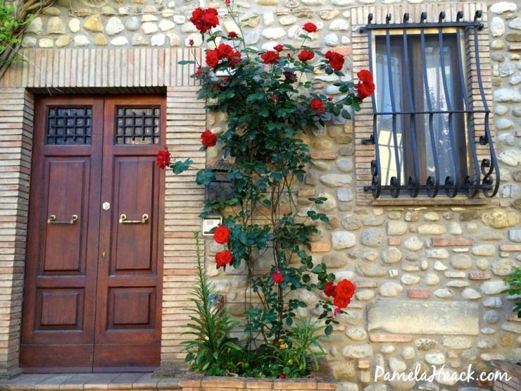 roses.018