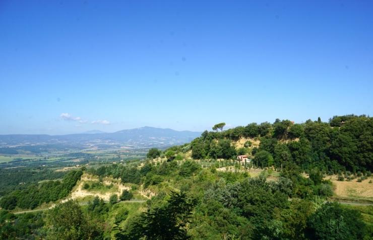 monteleone-4